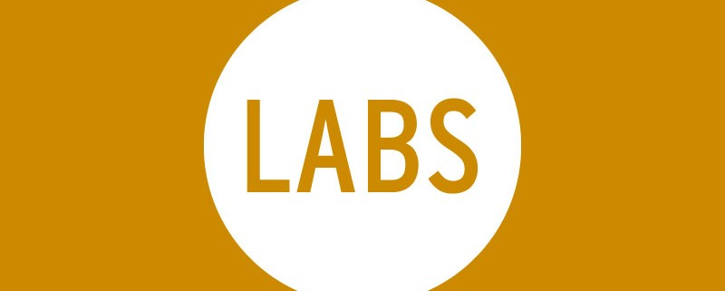 placeholder_labs_2017